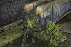 Watercourse Royalty Free Stock Photo