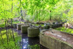 Experimental installations in the Waterloopbos Stock Image