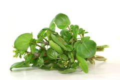 Watercress Fotos de Stock