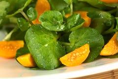 Watercress And Physalis Salad Stock Photos