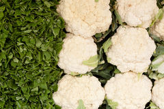 Watercress and Cauliflower Royalty Free Stock Photo