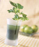 Watercress green bowling cocktail Royalty Free Stock Images