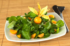 Watercress and Physalis Salad Stock Images