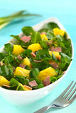 Watercress Pineapple Ham Salad Stock Images