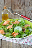 Watercress salad Stock Photography