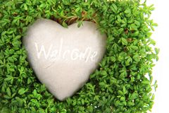 Watercress and stone heart Royalty Free Stock Photo