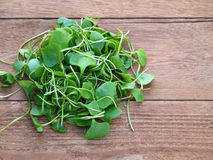 Watercress on wooden background Royalty Free Stock Photos