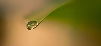 Waterdaling Stock Foto