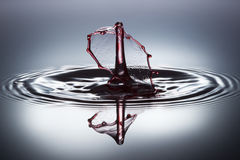 Waterdaling Royalty-vrije Stock Fotografie