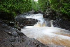 Waterdaling die bos doornemen Royalty-vrije Stock Fotografie