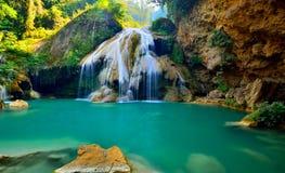Waterdaling in diepe regenwoudwildernis die wordt gevestigd Royalty-vrije Stock Foto