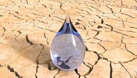 Waterdaling in het Concept van de woestijn 3D Illustratie Royalty-vrije Stock Fotografie