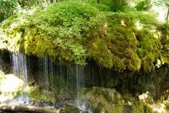 Waterdaling van mos behandelde rots royalty-vrije stock afbeeldingen