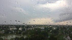 Waterdalingen op glas na regen stock videobeelden