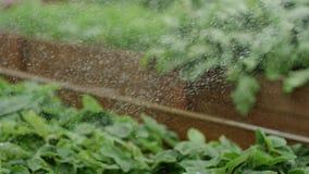 Waterdalingen op installaties stock video