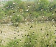 Waterdalingen op venster netto netwerk met groene bomen op achtergrond stock foto
