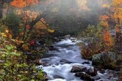 Waterdalingen van landelijk Vermont in de herfsttijd stock foto's