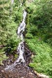 Waterdall on Karlova Studanka in Czech republic. Waterfall with forest around on Karlova Studanka spa in Jeseniky mountains in Czech republic stock photos