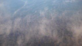 Waterdamp op oppervlakte van koud ijzig water in rivier stock footage