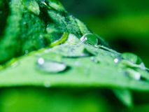 waterdrop 库存照片