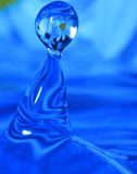 Waterdrop. With reflection of flowers inside Stock Images