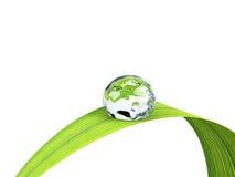 Waterdrop Royalty Free Stock Images