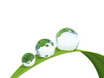 waterdrop Fotografia Stock