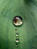 Waterdrop images libres de droits