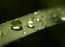 waterdrop Fotografia Royalty Free