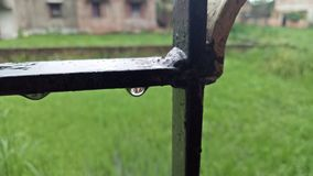 waterdrop Стоковая Фотография RF