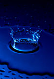 Waterdrop forming a crown effect Royalty Free Stock Photo