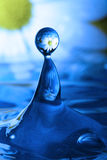 Waterdrop with reflection of a flower. Waterdrop with reflection of flowers stock photography