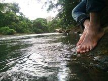 Waterdrops Immagine Stock Libera da Diritti