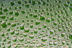Waterdrops Stock Image