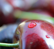 Waterdrops on Cherry, macro Royalty Free Stock Images