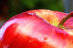 Waterdrops op appel Royalty-vrije Stock Afbeelding