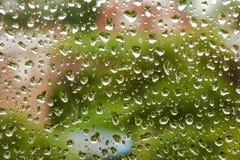 Waterdrops på ett fönster Fotografering för Bildbyråer
