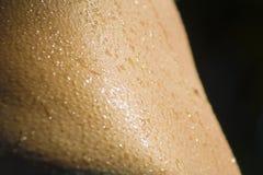 Waterdrops på hud Royaltyfri Foto