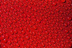 Waterdrops rojos Foto de archivo libre de regalías