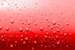 Waterdrops rojos simples Fotos de archivo libres de regalías