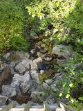 Waterdruppeltjes in Belton-Meer van verdant helling stock foto