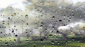 Waterdruppeltjes op mistig venster aan een tuin Royalty-vrije Stock Foto's