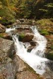 Waterelement stock afbeeldingen