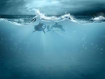 Waterelement in dolfijn Stock Afbeeldingen
