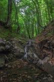 Waterfal Photographie stock libre de droits