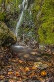 Waterfal Photos libres de droits