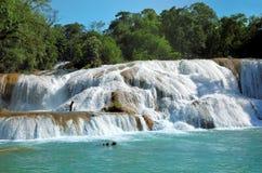 Waterfal Agua Azul Chiapas Meksyk Fotografia Royalty Free