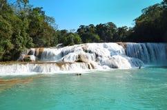 Waterfal Agua Azul Chiapas Meksyk Zdjęcia Royalty Free