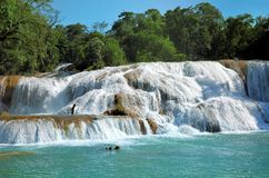 Waterfal Agua Azul Chiapas Mexico Royalty Free Stock Photography