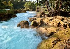 Waterfal Agua Azul Chiapas Mexico Royalty Free Stock Photos